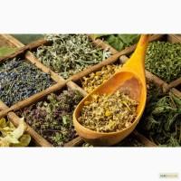 Продам лекарственные растения