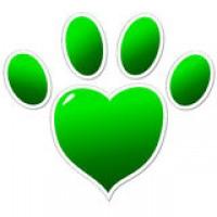 Большой выбор ветеринарных препаратов в интернет-магазине VinVetZoo