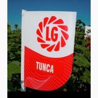 Семена подсолнуха Тунка 2016 год