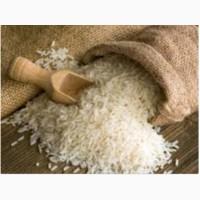 Купим рис импортный
