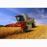 Услуги по уборке урожая уборка зерновых сои кукурузы подсолнечника рапса по Украине