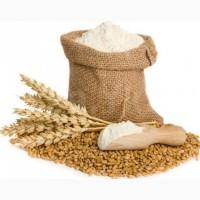 Продам муку пшеничную высшего сорта