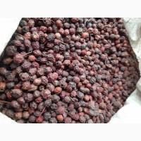 Продам сухий глід (бояришник) 5 тн