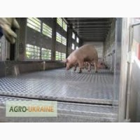 Услуги перевозки свиней спецтранспортом