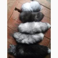 Хвости чорнобурки