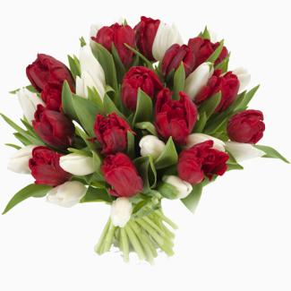 Калли, лілії, тюльпани, рози
