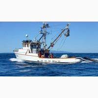Продажа Морской Рыбы свежей