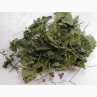 Лист Ежевики (листья ожини)