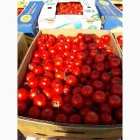 Продам помидор томат
