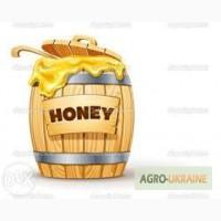 Закупаем мед в больших количествах. Цену уточняйте