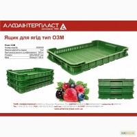 Ящик пластиковый для ягод 600х400х80 5 кг