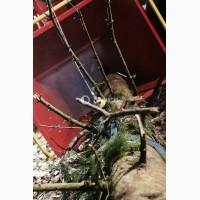 Измельчители древесины Linddana TP 270 (Щепорез)