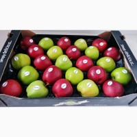 Яблоки оптом производства Польша