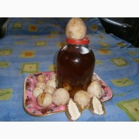 Продам настойку гриба весёлки лечебную