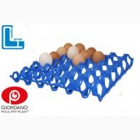 Лоток для яиц, лотки для яиц, лотки для куриных яиц, пластиковые лотки для яиц