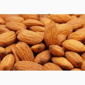 Raw California Almond nut