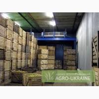 Сдам овощехранилище 1800 м, можно отдельную камеру 200 м, г. Горловка, Донецк