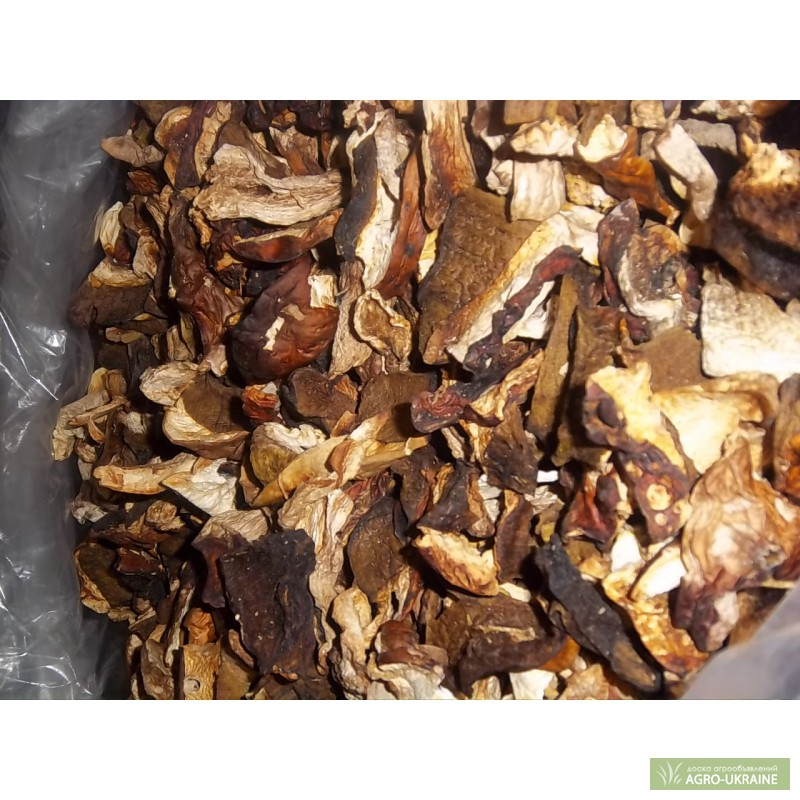 Продать сухие белые грибы