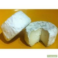 Козий сыр. Коровий сыр благородной плесенью
