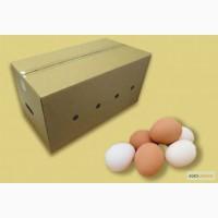 Ящик для Яиц
