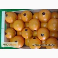 Лимоны, апельсины, мандарины из Испании оптом