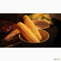 Куплю кукурузу.ДСТУ 4525:2006