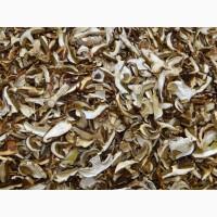 Продам сушеные Белые грибы