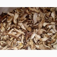 Сушение грибы