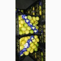 Продам лимоны (Турция)