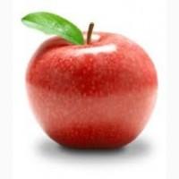 Підприємство закупляє яблука з місця дорого по всій Україні звоніть домовимось