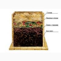 Калифорнийские черви для биогумуса с вермиконтейнером