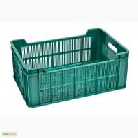 Продам ящики пластмасовые под хлеб, овощи, мясную продукцию 600 400 240 новые