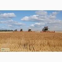 Оказываем услуги уборки урожая по всей Украине