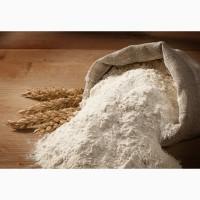 Продам пшеничная мука 1с (первый сорт), по Украине и на экспорт (FCA, DAF, FOB, CFR, CIF)