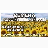 Семена подсолнечника Pioneer Syngenta Euralis LG от 120$