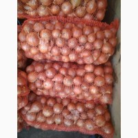 Продажа лука от производителя в Херсонской области