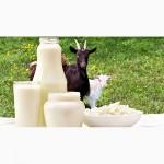 Продам козье молоко в Ужгороде