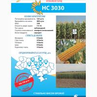 Hacіння Kукуpудзи HC 3030 (ФAO 330), Юг Aгpoлідep - Cepбcькa ceлeкція (Hoви Caд)