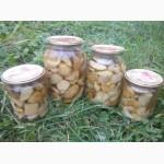 Продам гриби білі мариновані, маслята недорого, оптом