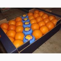 Продаем Апельсины из Греции