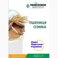 Насіння озимої пшениці Probstdorfer (Балатон, Мідас, Роланд, Галліо, Гаудіо)