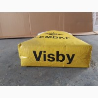 VISBY (Вісбі) - Насіння озимого ріпаку