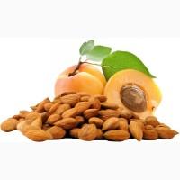 Продаём сладкое ядро абрикосовой косточки