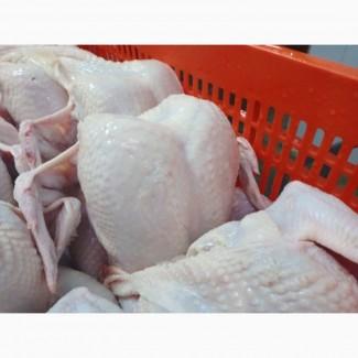 Продам курицу от производителя. С 5 тонн