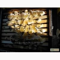 Продам Крымский горный лавандовый мед и разнотравье, шалфей