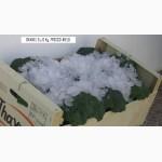 Продаем салаты