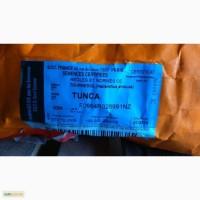 Семена подсолнечника Лимагрейн Тунка 2016 Limagrain 5580 5550