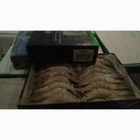 Продам креветки Black Tiger HOSO, широкий выбор морепродуктов