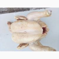 М#039;ясо курятини