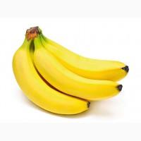 Бананы (Эквадор)